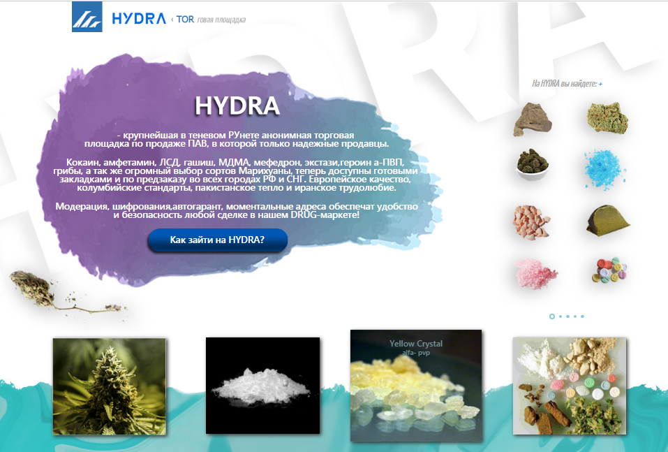 Ссылка сайта darknet hydra tor browser история hyrda